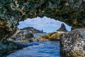 Turismo naturalistico e Turismo Sostenibile